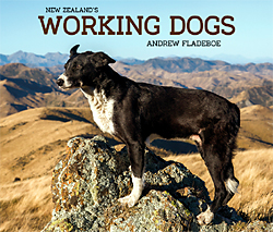 nzs_working_dogs_250w